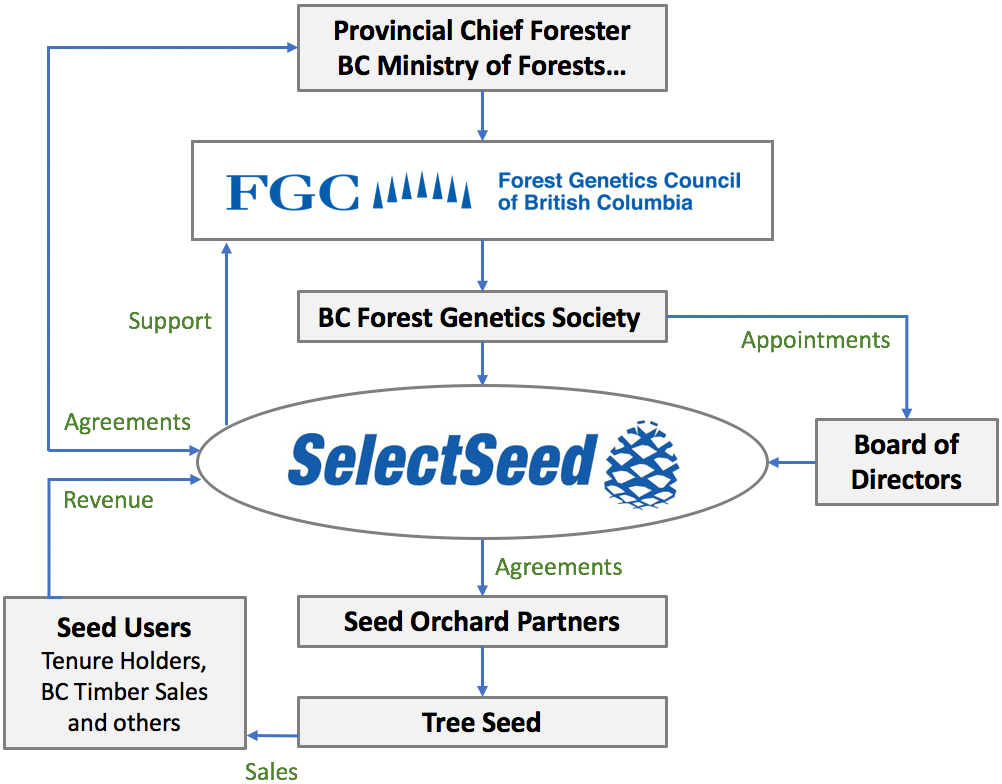 Select Seeds Organizational Structure